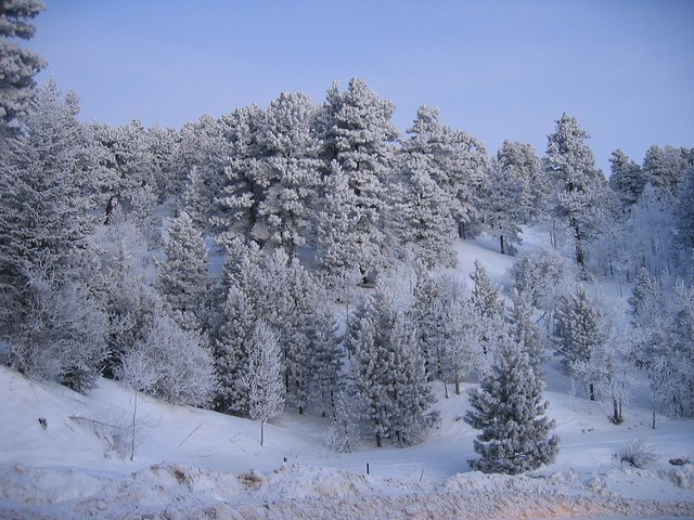 siberia the coldest place in the world