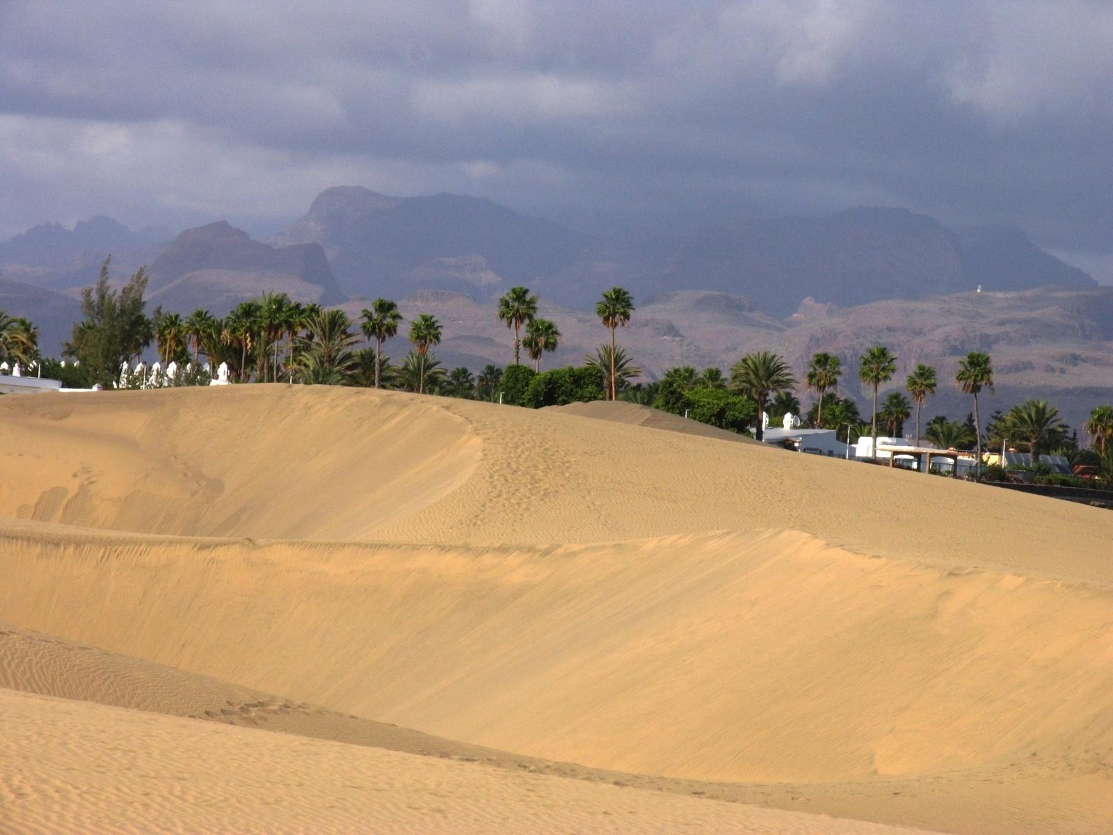 sandy dunes gran canaria