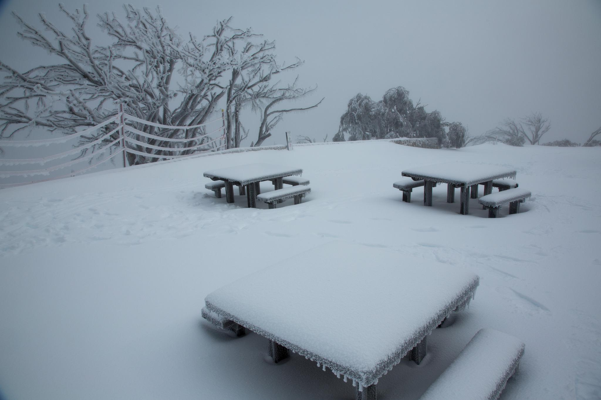 Snow cover in Mount Buffalo, Victoria