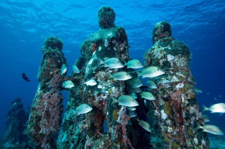 Human Reef Marine National Park, Cancun