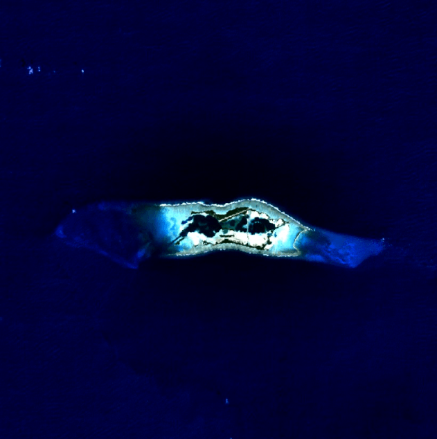Palmyra Atoll - NASA Satellite Image