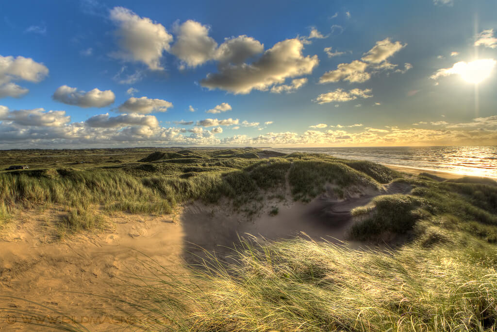 sand dune along the north sea coast denmark