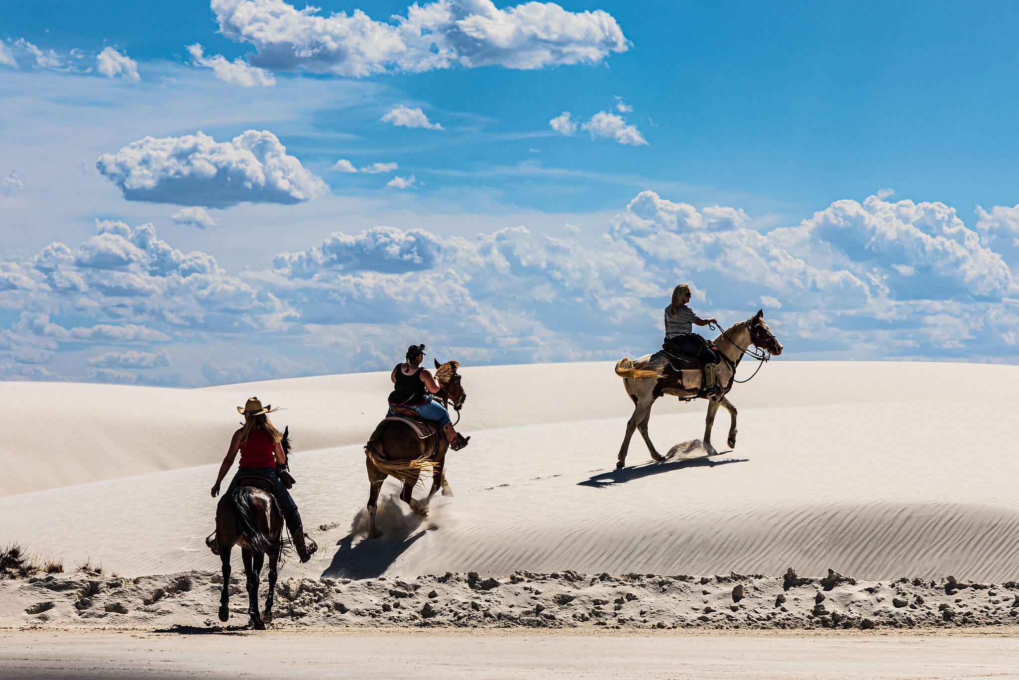 riding horses at white sands national monument